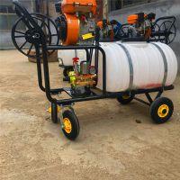汽油动力打药机 200升手推汽油喷雾器价格 普航杀虫机品牌
