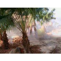 专业热带植物园人工造雾系统喷雾系统全国热销