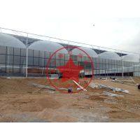 钢结构拱形连栋智能温室大棚建造价格——青州瀚洋温室