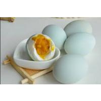 山东金霞无污染咸鸭蛋礼盒生产厂家供应