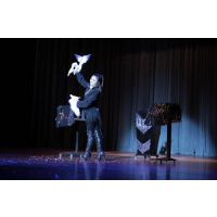 节目表演、舞蹈、力量、歌手、水鼓、魔术、小提琴