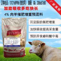 羊吃什么长肉快,快速催肥羊饲料,育肥羊专用饲料批发