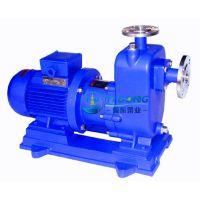 毅东/yidong,ZCQ型自吸式磁力泵,厂家直销,量大优惠!