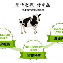 奶牛益生菌奶牛调节肠道益生菌制剂