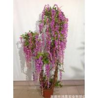 2米豆花树 仿真植物盆景 绿色景观装饰 新款豆花树厂家直销