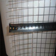 一寸电焊网 pvc涂塑电焊网 优质焊接网