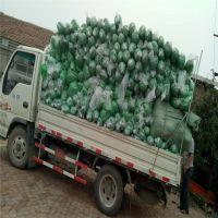 1.5针绿色防尘盖土网 防尘盖土网厂家 现货供应 厂家直销