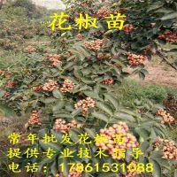 http://himg.china.cn/1/4_912_236978_200_200.jpg