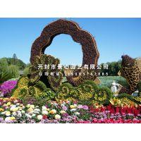 开封五色草立体花坛 植物造型 绿雕