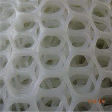 鸡鸭垫底网 养殖塑料 江西养殖网