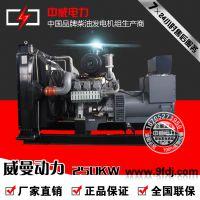 厂家直销D11A1 250KW威曼动力发电机组