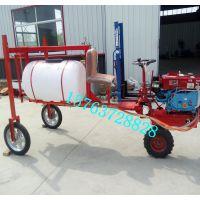 吉林鲁丰多功能三轮车打药机 全自动三轮车打药机厂家