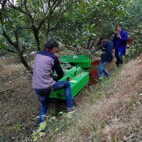 自走式葡萄园撒肥回填机 富兴果园开沟施肥机 柑橘园履带式开沟价格