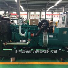 潍柴动力蓝擎150千瓦柴油发电机组 WP10D200E200