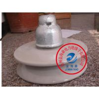 XWP-100防污瓷瓶
