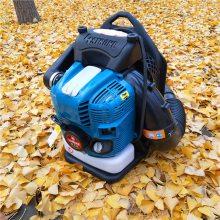 园林路面吹尘机厂家 轻便汽油吹风机 背负式汽油风力灭火机 乐丰牌