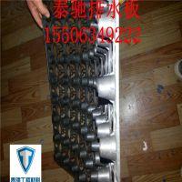 http://himg.china.cn/1/4_916_243178_800_800.jpg