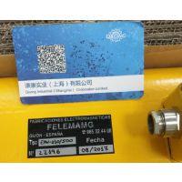 西班牙FELEMAMG金属分离器RIC31-36