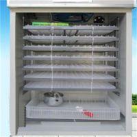沧州枚三用全自动孵化机 1232枚三用全自动孵化机的厂家