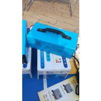 电动汽车充电器 电池充电器 免维护充电器 干电充电器 观光车充电