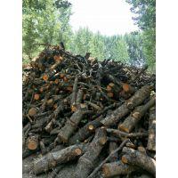 青岛优质果木炭、机制炭厂家联系方式