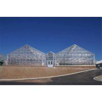 宿州 连栋玻璃温室大棚装配式安装专业快速 承接全国业务