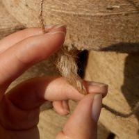 RX厂家直销打捆机专用绳 多用途捆草绳 黄麻绳 加工直销环保绳