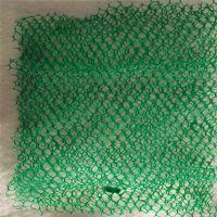 山东厂家大量现货# 绿色环保三维植被网 承接订做 型号规格齐全