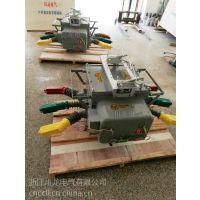 浙江川龙ZW20-12分界真空断路器厂家