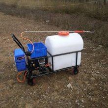 多功能高压打药机105L茶园草坪喷雾器手推电动喷药车厂家直销