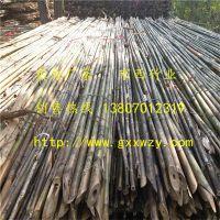 大量供应甘肃玉门、瓜州绑扶枸杞树苗用的竹杆