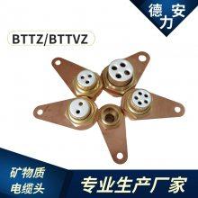 矿物质电缆头BTTRZ电缆接头价格