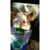 羊为什么舔毛啃地 羊疾病的预防 羊吃什么长膘长的快 谊鑫白金肽