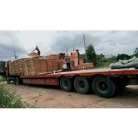 广西鲁安长期供应桉木单板,板面光滑
