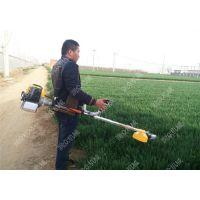 农用果园除草机 背负便携割草机价格 润众