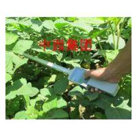中西(LQS现货)植物冠层分析仪 型号:LB06-TOP-1000库号:M404460