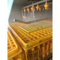 雏鸡笼清洗机,鸡鸭鹅笼清洗机,干燥消毒式洗笼机