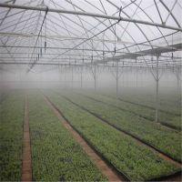 智能喷灌系统-温室大棚喷灌机喷水车-操作简单-汉明设备-农业生产