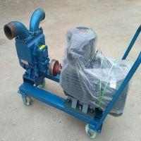 供应淄博龙威牌倒油泵配5.5千瓦防爆电机