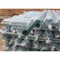 道路护栏铁丝网现货 浸塑护栏网 防护网现货供应