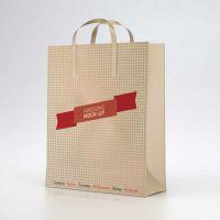 深圳纸袋定做 化妆品礼物食物打扮购物手提袋印刷定制 免费设想