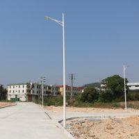 新农村道路照明灯 深圳高速路双臂路灯灯杆 8米单臂路灯杆批发