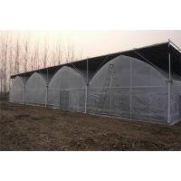 汉中 连栋蔬菜薄膜温室大棚建设 施工厂家