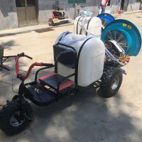 风送式强压喷雾器 果园座驾式喷药机 多功能自走式三轮打药机批发