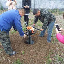 武汉植树打眼机 小型立柱挖坑机 汽油便携式种树机