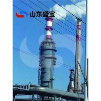 山东盛宝专业生产定制安装脱硫设备