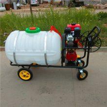 农用高压喷雾器 手推式杀虫打药机 果树喷药机型号 乐丰牌