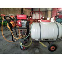电动打药泵高压喷雾机 金源