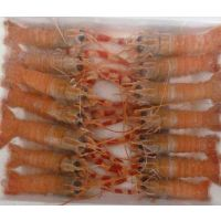 威海鳌虾价格 深海龙虾好不好吃