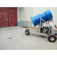 河北迪特专业造雪设备生产厂家
